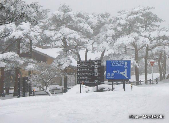 雪のえびの高原
