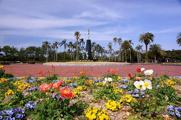 KIRISHIMAヤマザクラ宮崎県総合運動公園 中央広場の花壇