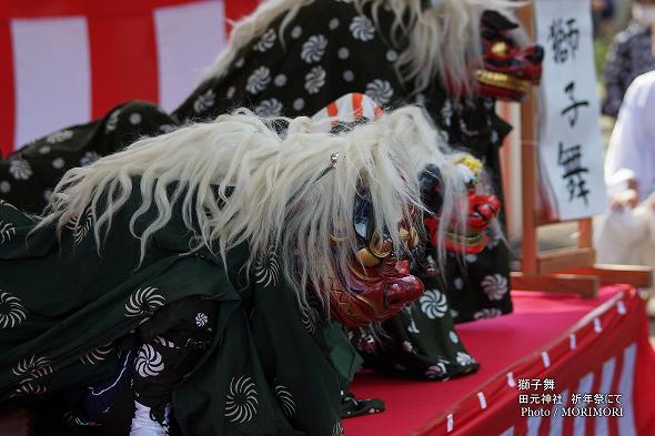 田元神社  春まつりにて (獅子舞)