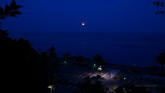 満月の夜 (宮崎市 道の駅フェニックスにて)