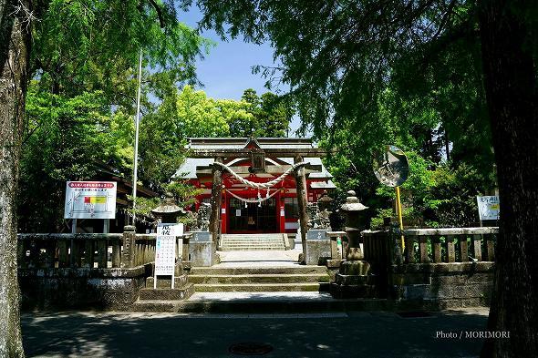 大塚神社(大塚八幡神社) 新緑 1