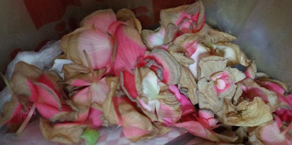 積んだ花弁