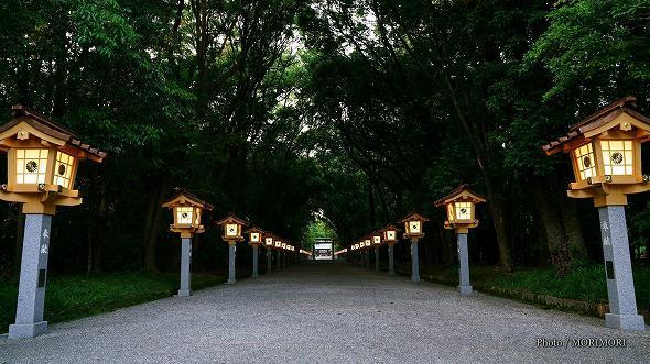 宮崎神宮 参道の灯篭 2