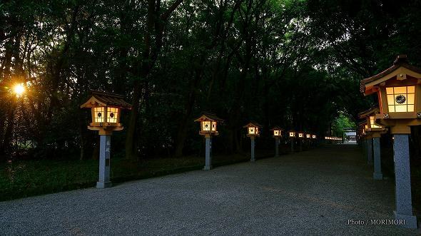 宮崎神宮 参道の灯篭 3