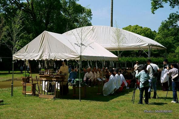 平成29年度 宮崎神宮 御田植祭の写真 2