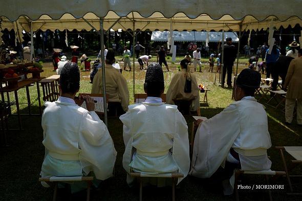 平成29年度 宮崎神宮 御田植祭の写真 5