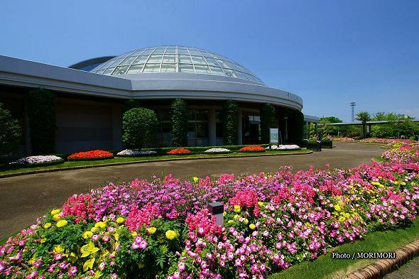フローランテ宮崎 正面玄関前の花壇