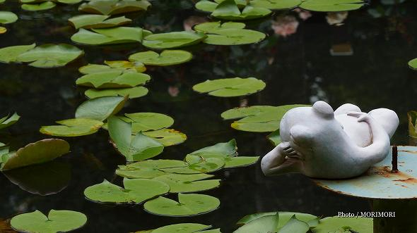 スイレン池とカエルの置物(こどものくに)