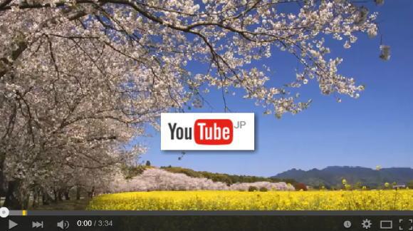 西都原古墳群の桜と菜の花(動画リンク)
