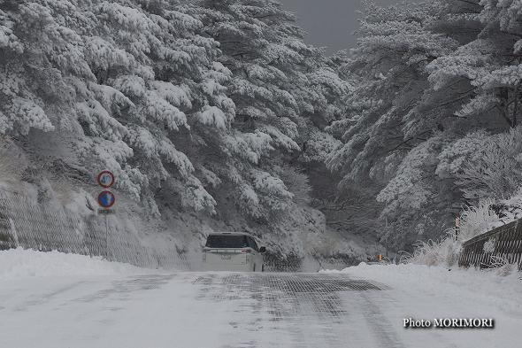 積雪した「県道1号」にて