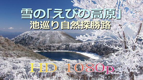 雪の えびの高原 池めぐり探勝路