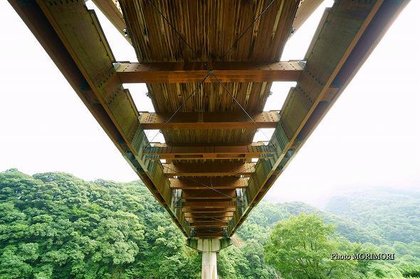 かりこぼうず大橋 5