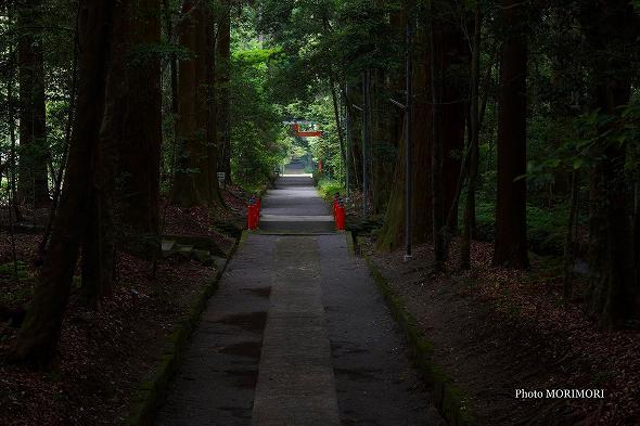 狭野神社 参道