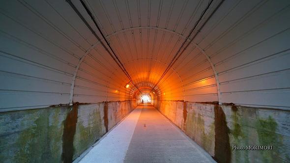 鵜戸神宮 新参道 トンネル(鵜戸崎隧道)