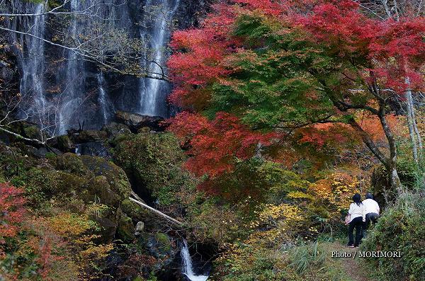 五ヶ瀬町 白滝の紅葉