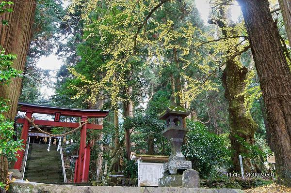 五ヶ瀬町鞍岡鎮座 祇園神社