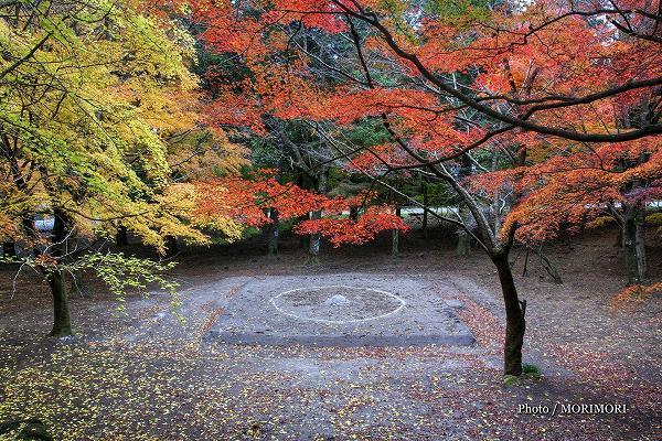 霧島神宮の土俵
