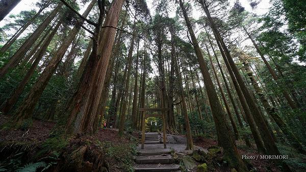 霧島神宮 山神社