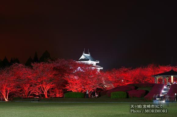 天ヶ城(あまがじょう)宮崎市 夜桜ライトアップ