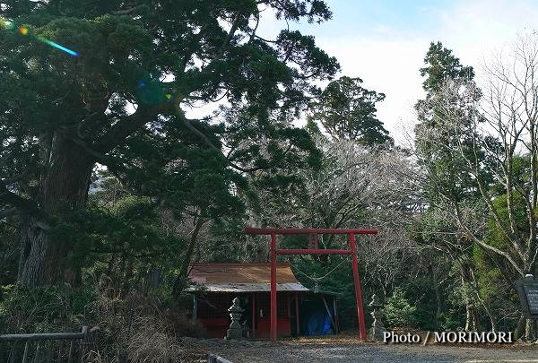 六観音御池の豊受神社