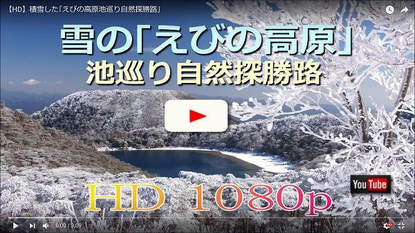 積雪したえびの高原の池巡り自然探勝路