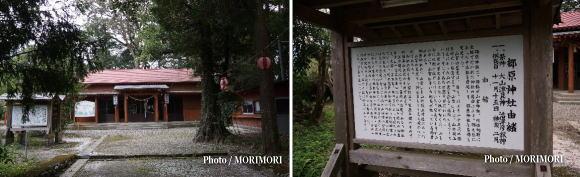 郷原神社(ごうのはらじんじゃ)
