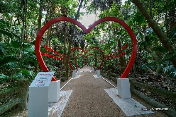 青島神社 「CanCam」のコラボ企画ハートのゲート