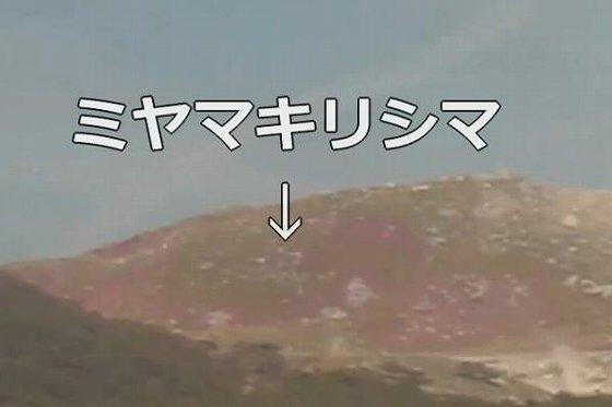 ミヤマキリシマ