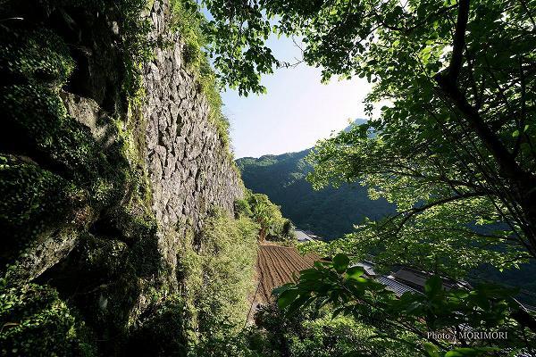 石垣の村戸川 日本一高い石垣