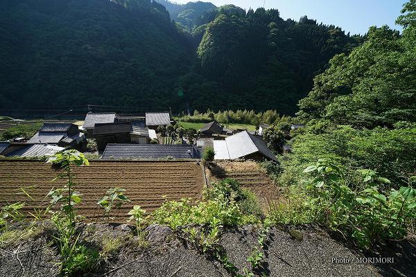 石垣の村戸川 日本一高い石垣 上部より
