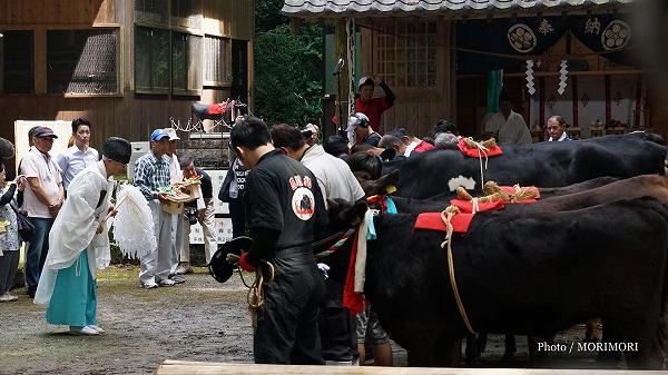 えびの市 西川北菅原神社「牛越祭」