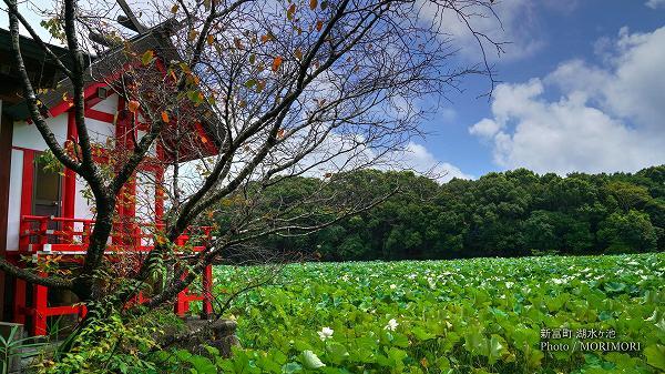 宮崎県 新富町 水沼神社と湖水ヶ池