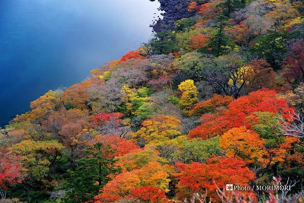 大浪池の紅葉