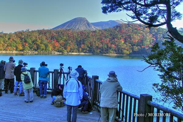 六観音御池の紅葉