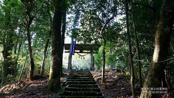嶽之枝尾神社参道階段 鳥居