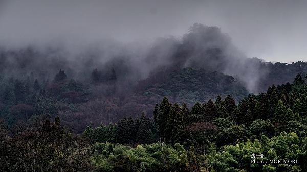 浅ヶ部集落の山