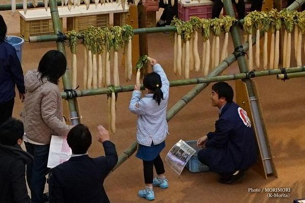 宮崎ブーゲンビリア空港オアシス広場の大根櫓