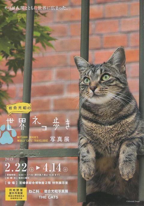 岩合光昭の「世界ネコ歩き」(写真展) 宮崎 チラシ 1
