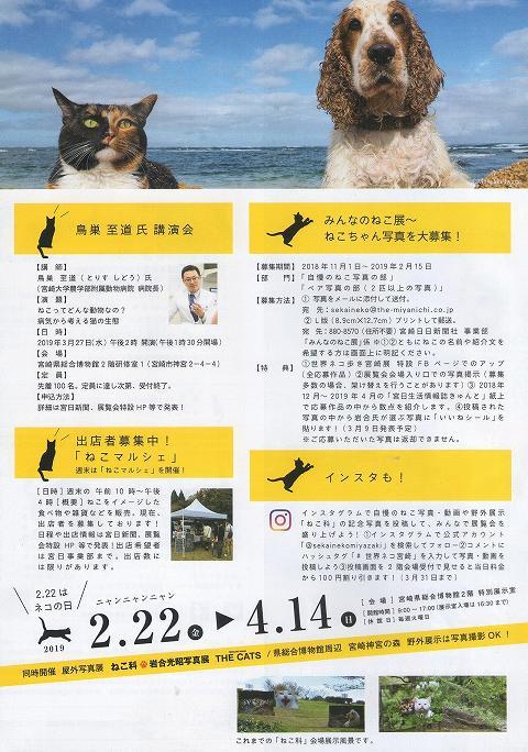 岩合光昭の「世界ネコ歩き」(写真展) 宮崎 チラシ 2