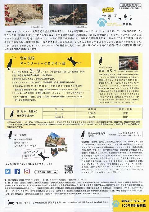 岩合光昭の「世界ネコ歩き」(写真展) 宮崎 チラシ 3