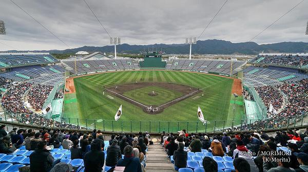2019年巨人春季キャンプ(サンマリンスタジアムにて) 1