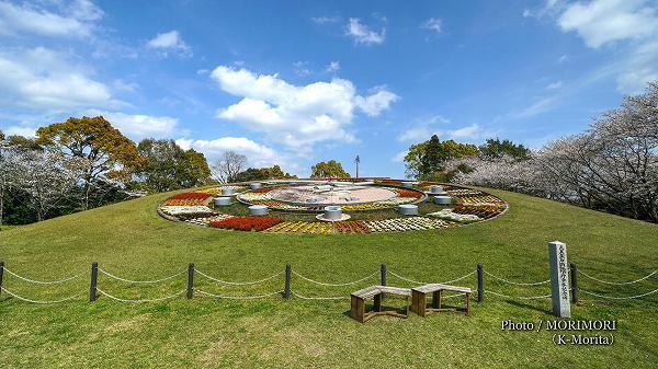 綾町 馬事公苑の大きな花時計