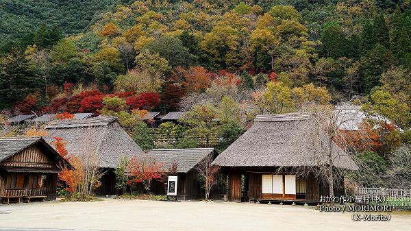おがわ作小屋村(秋・紅葉の時期の撮影)