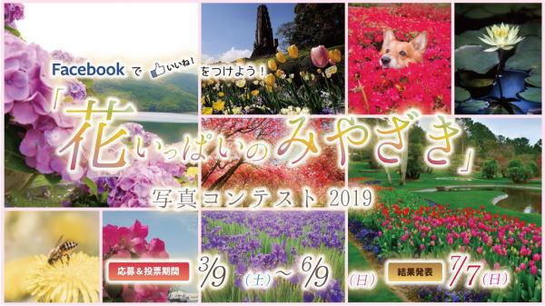 「花いっぱいのみやざき」写真コンテスト2019 スクリーンショット