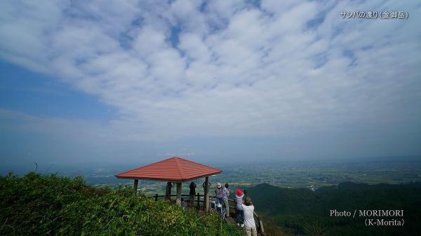 サシバの渡り見学(宮崎県都城市 金御岳山頂東屋)
