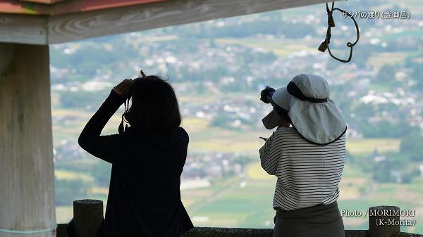 サシバの渡り見学者(宮崎県都城市 金御岳山頂東屋)