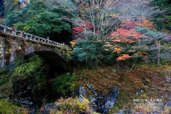 神橋と紅葉(高千穂峡)