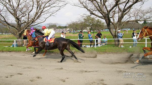 第8レース「綾城賞」