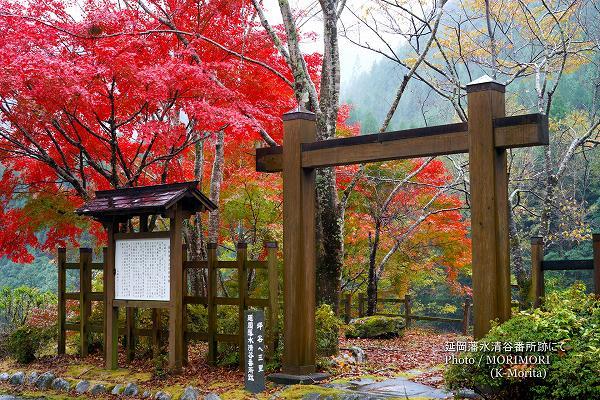 延岡藩水清谷番所跡の紅葉
