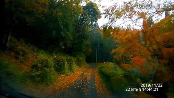 栂尾神社への道にて(紅葉が綺麗)